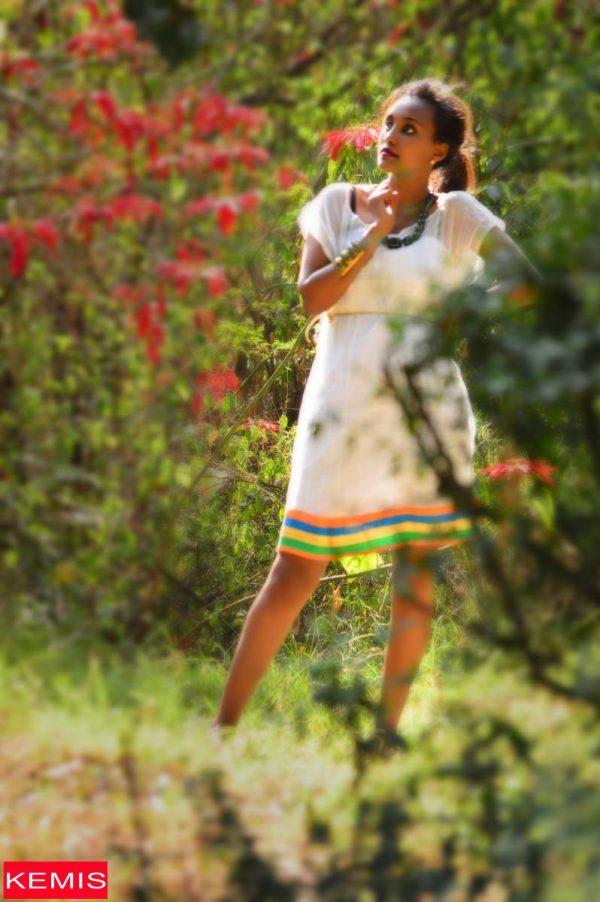 african dress2-ethiopian-habesha-dresses-kemisd-ethiopian-traditional-dress-ethiopian-modern-dresses-ethi
